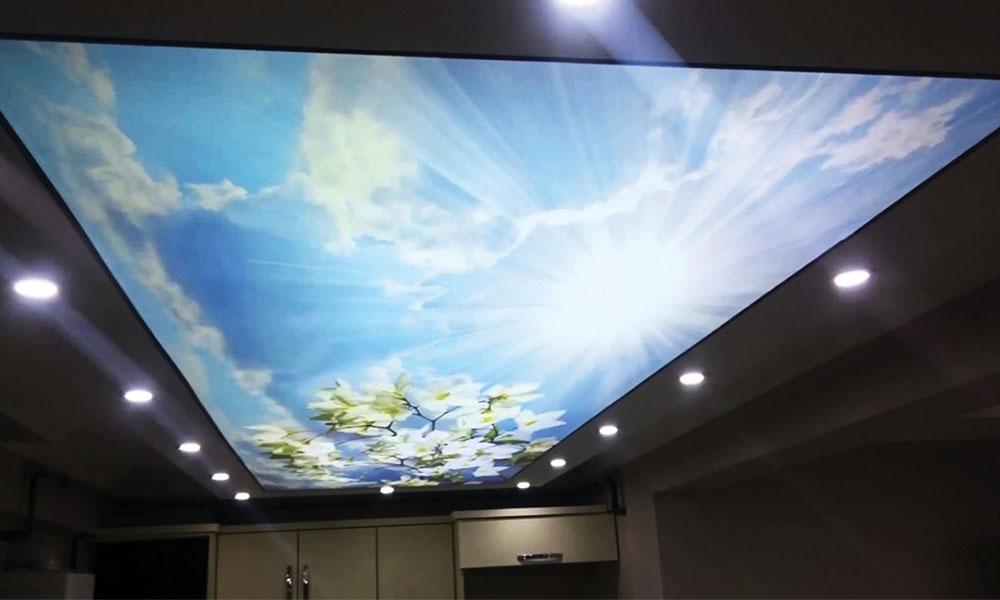 Светопрозрачные натяжные потолки 8