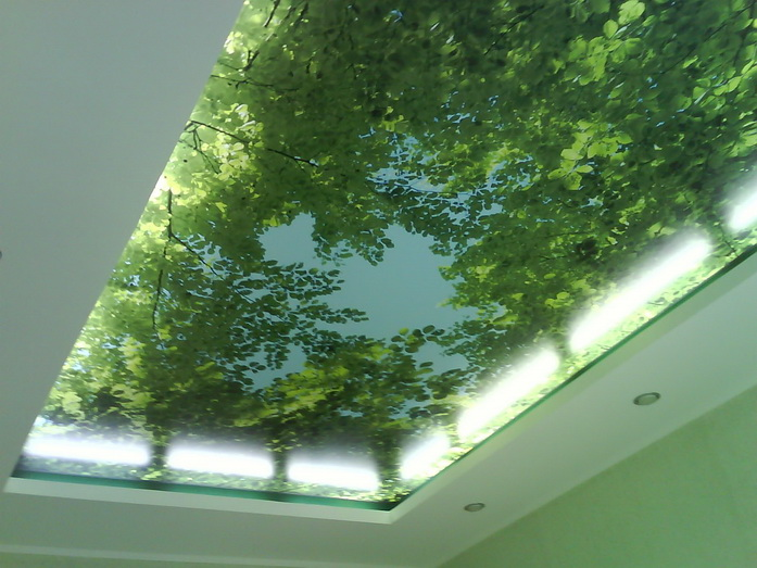 3d потолок в Молдове цена