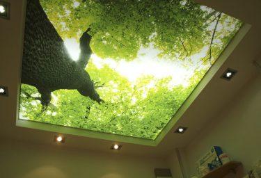 3d потолок в Молдове цена фото